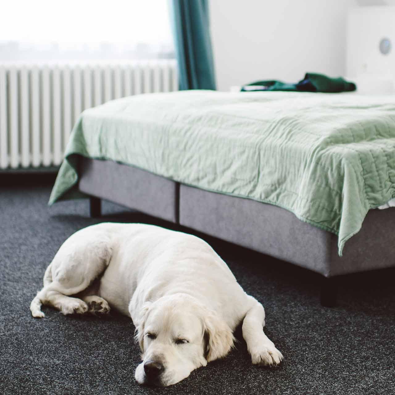 Entspannung pur in den Zimmern des meerzeit Hotels